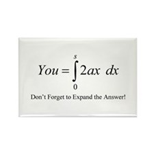 Your Math Insult Rectangle Magnet
