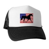 Missouri fox trotter Hat