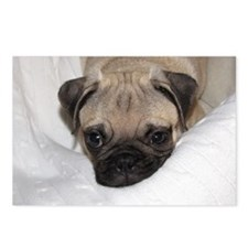 Christmas Pugs 2010 376 Postcards (Package of 8)