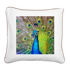 peacock1 Square Canvas Pillow