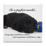 Perfect World (Lab) Tile Coaster