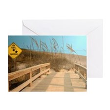 Sea Turtle Crossing Greeting Card
