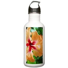 Costa_Rica_Hibiscus_iT Water Bottle