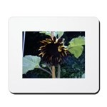Dark Sunflower Mousepad 