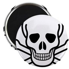 MGS_skull_and_crossbone Magnet
