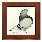 Silver Domestic Flight Framed Tile