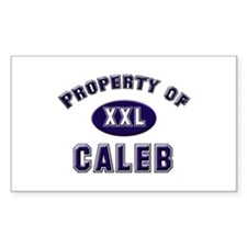 Property of caleb Rectangle Decal