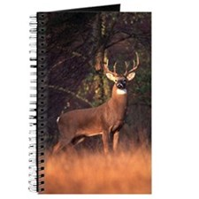 Whitetail Deer Journal