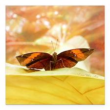 "papillon_jaune_Lore-M_ar Square Car Magnet 3"" x 3"""