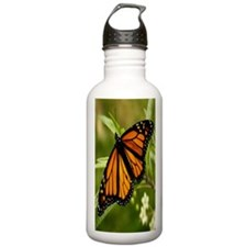 62 copy Sports Water Bottle