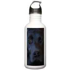 BlackLab23x35 Water Bottle