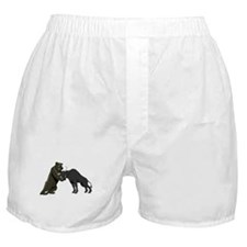 Bull vs. Bear Markets Boxer Shorts