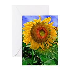 DSC_0155L-poster Greeting Card
