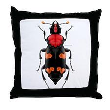 Amer. Burying Beetle Throw Pillow