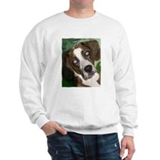 Unique Catahoula leopard dog art Sweatshirt