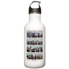 172_final_cafepress Water Bottle