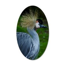 African_Crowned_Crane-2 Wall Decal