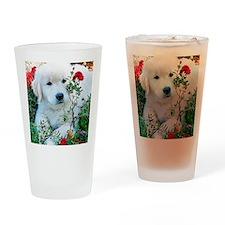 Golden Retriever Puppy Gift iPad Ha Drinking Glass