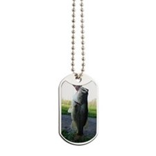 Bass Fish Dog Tags