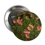 Snapdragons Button