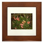Snapdragons Framed Tile