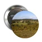 Ashdown Forest Button