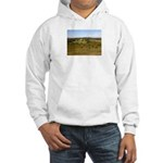 Ashdown Forest Hooded Sweatshirt