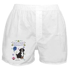 Bernese Boxer Shorts