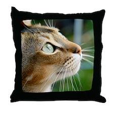 DSCm13 Throw Pillow
