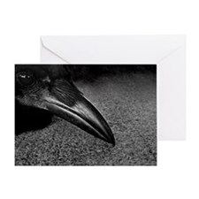 crow-photo-130-crop-Poster Greeting Card