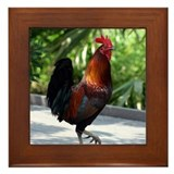 Rooster Framed Tile