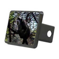 Emperor Tamarin Hitch Cover