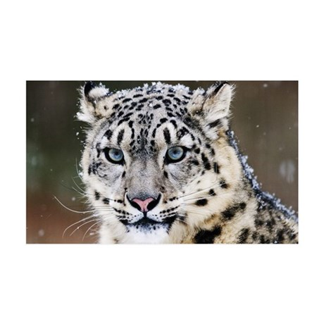 Snow Leopard 35x21 Wall Decal