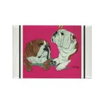 English Bulldog Pair Rectangle Magnet (100 pack)