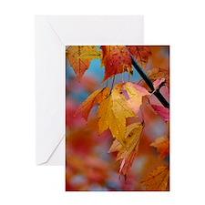 10x14_yellowleaf Greeting Card