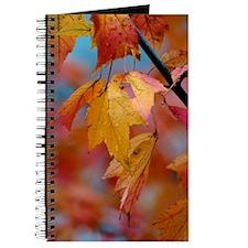 10x14_yellowleaf Journal