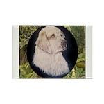 Clumber Spaniel Hunter Rectangle Magnet (100 pack)