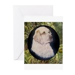 Clumber Spaniel Hunter Greeting Cards (Package of