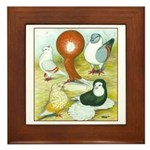 Pigeon Color Book Framed Tile