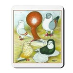 Pigeon Color Book Mousepad