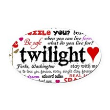 TwiTerms Toiletry Oval Car Magnet