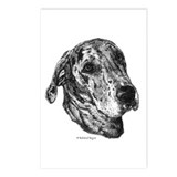 Merle Dane Postcards (Package of 8)