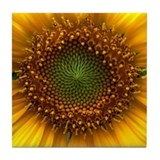 Sunflower Tile Coaster