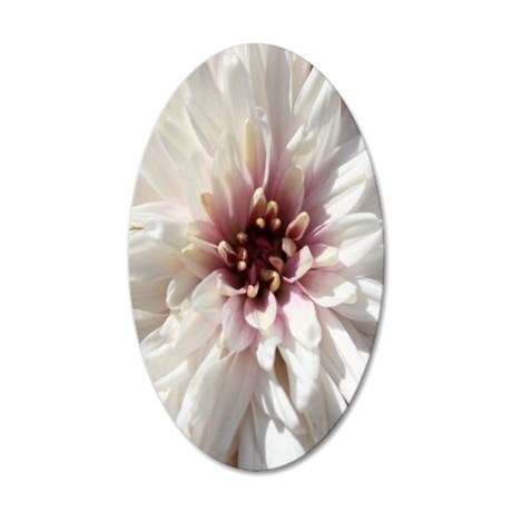 White and Pink Chrysanthemum 35x21 Oval Wall Decal