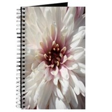 White and Pink Chrysanthemum Journal