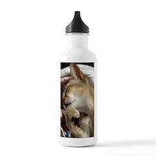 ange Water Bottle