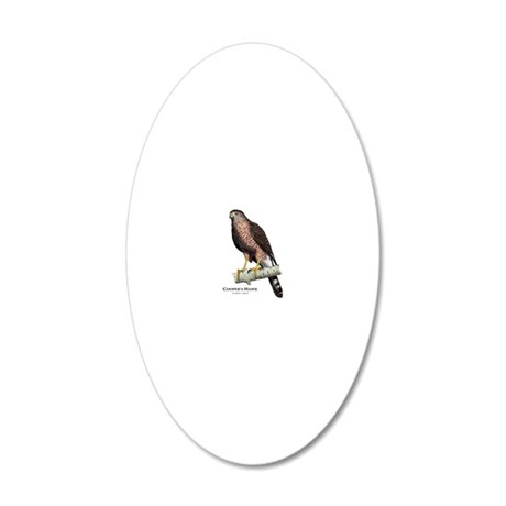 Coopers Hawk 20x12 Oval Wall Decal