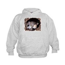 Flying Squirrel Hoodie