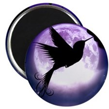 Moonlit Hummingbird Magnets