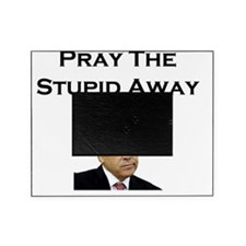Pray The Stupid Away Picture Frame